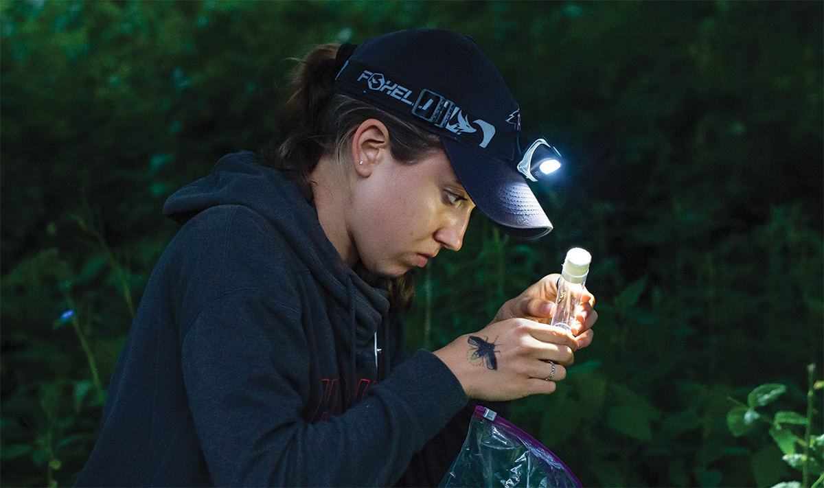 Sarah Bain '21 checks to see if the firefly she caught is male or female